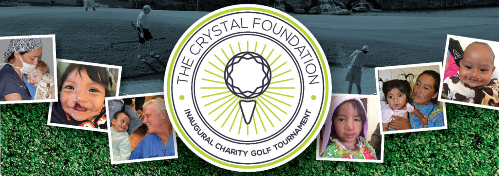 The Crystal Foundation Banner
